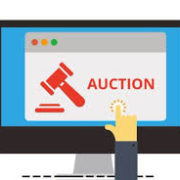 Cancer Walk Online Auction Going On Now