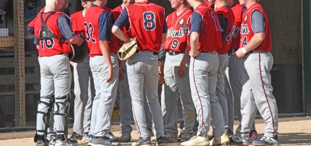 Milbank Post 9 Legion Baseball Team to Kick Off Season June 1