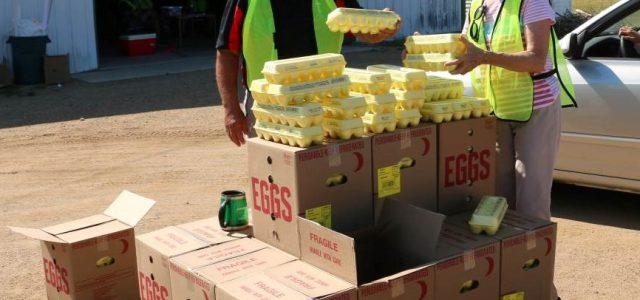 Food Giveaway in Milbank Helps 257 Families